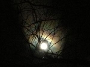nov full moon 1